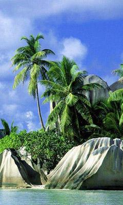 Картины на телефон 240х400 природа картинки